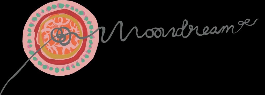 Moondream   Transformatie Coaching
